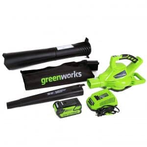 GreenWorks 185MPH Cordless Leaf Blower