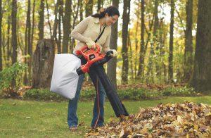 Leaf Vacuums