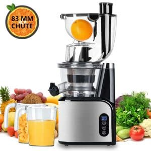 Aobosi Portable Juice Extractor