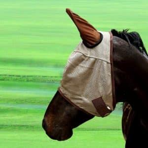 CubeTech Horse Fly Mask