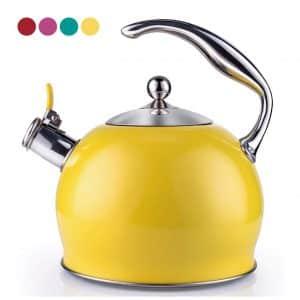 Sotya Surgical Whistling Teapot