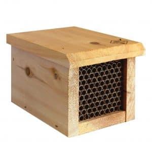 Welliver Standard hive