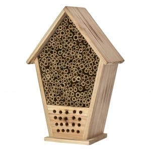 Homestead bee hive