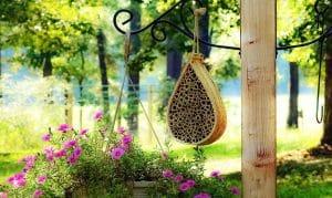 Best Mason Bee Houses in 2021