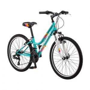 Schwinn High Timber Kid Mountain Bike