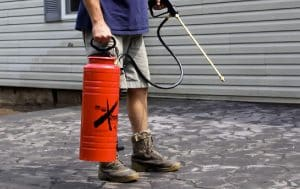 Best Concrete Sprayers in 2020