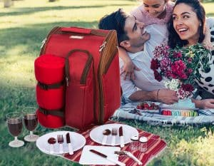Best Picnic Backpacks in 2020
